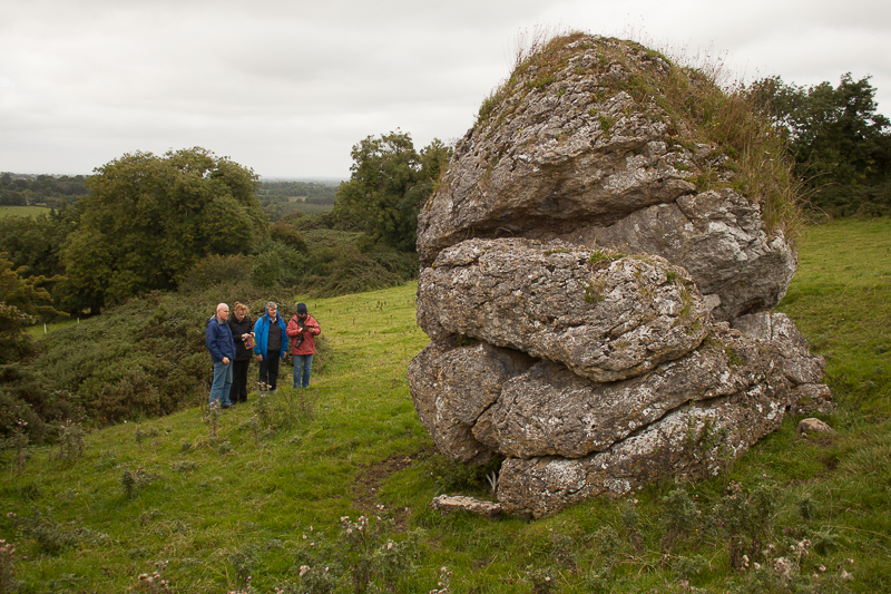 Cat Stone at the Hill of Uisneagh