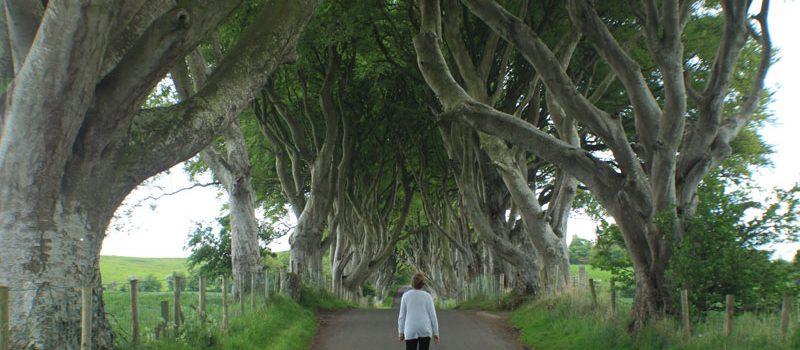 Travel to Ireland - Dark Hedges
