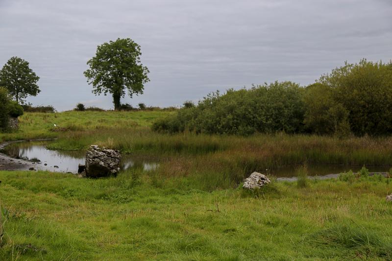 Lugh's Lake on the Hill of Uisneach