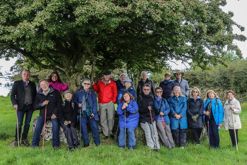 Guests under the fairy tree at the Hill of Uisneach